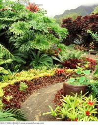 226 best images about Hawaiian Landscaping on Pinterest ...