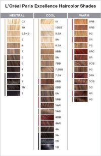 Healthy Hair Color At Regine39s SALON By L39OREAL ...