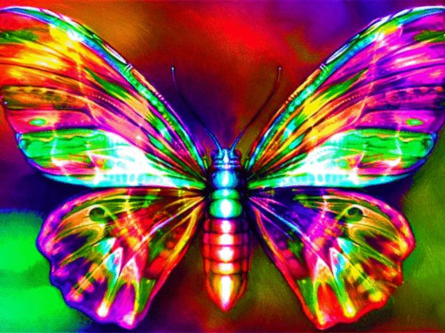 Amazing 3d Peacock Wings Wallpapers Neon Butterfly Colors Galore 2 Pinterest Rainbows