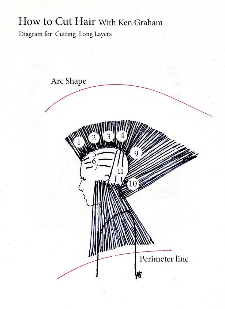 cutting hair diagrams diagram haircut pinterest