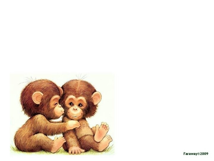 Monkeys And Bananas Cute Wallpaper For Girls 17 Best Images About Monkey On Pinterest Traditional