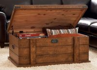 17 Best ideas about Storage Trunk on Pinterest ...