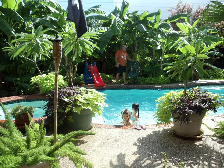 Backyard Pool Landscaping Ideas Florida