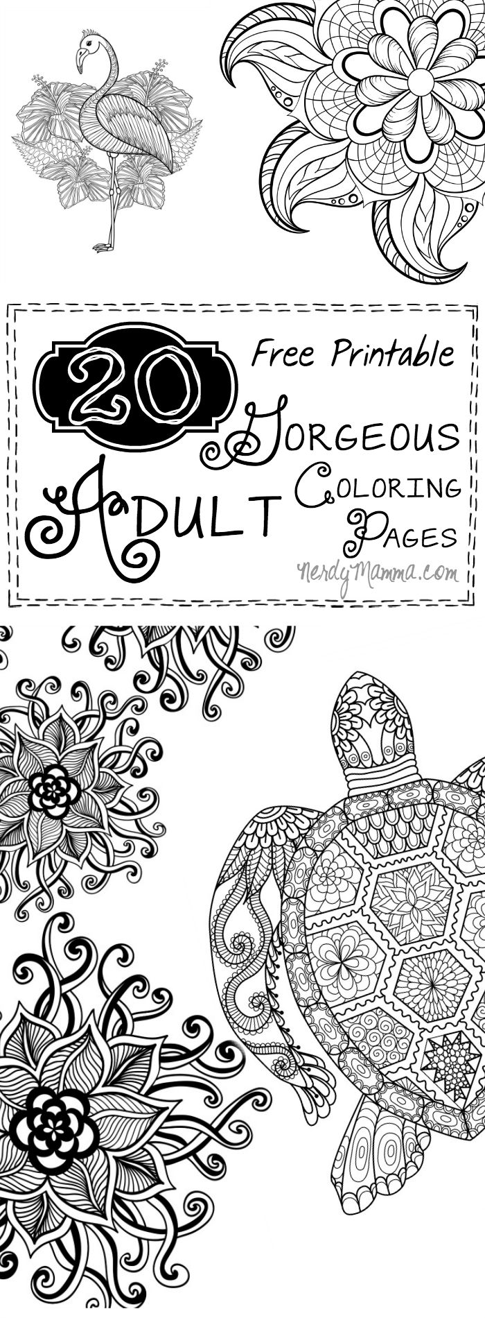 Asphalt 8 coloring pages - Asphalt 8 Coloring Pages 20 Gorgeous Free Printable Adult Coloring Pages Download