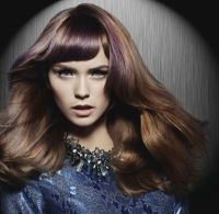 Best 25+ Metallic hair dye ideas on Pinterest | Lilac hair ...