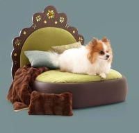 1000+ images about Unique Raised Dog Bed on Pinterest ...