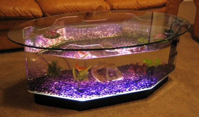 Cool fish tanks jebo jebo 62l half circle aquarium glass for Coffee table fish tank for sale