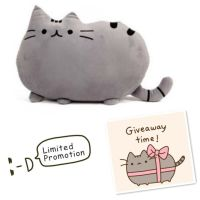 1000+ ideas about Pusheen Pillow on Pinterest | Cat Pillow ...