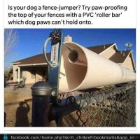 25+ best ideas about Dog proof fence on Pinterest | Fence ...
