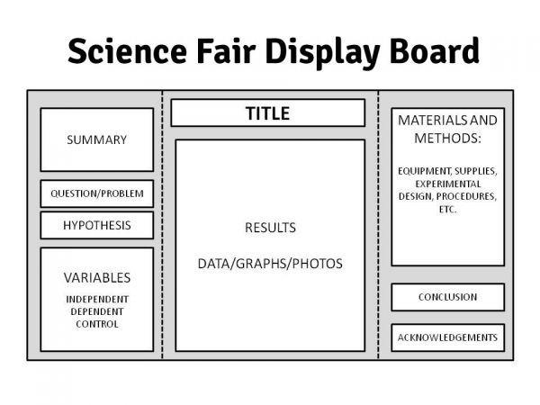 tri fold display board template