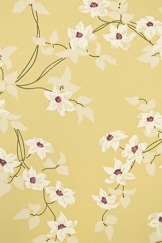 25+ best ideas about Floral print wallpaper on Pinterest