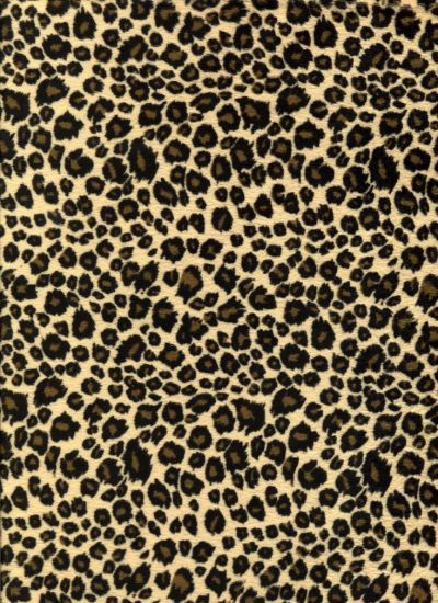1000+ ideas about Leopard Print Background on Pinterest | Backgrounds, Wallpaper and Whatsapp ...