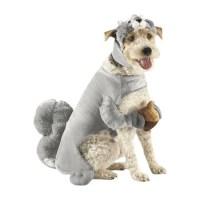 Pet Costume - Squirrel @Mika Lazar | Animals | Pinterest ...