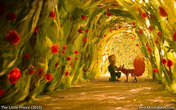 Piccolo Wallpaper Iphone 1000 Images About The Little Prince 2015 On Pinterest