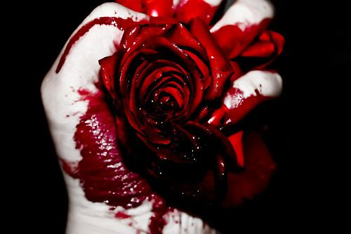 Don T Touch My Phone Wallpaper Girl My Love Is The Red Rose My Heart Is The Blood Both Are
