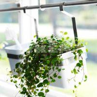 Ikea Grundtal planter for kitchen windowsill herbs via ...