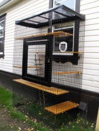 25+ best ideas about Outdoor cat enclosure on Pinterest ...