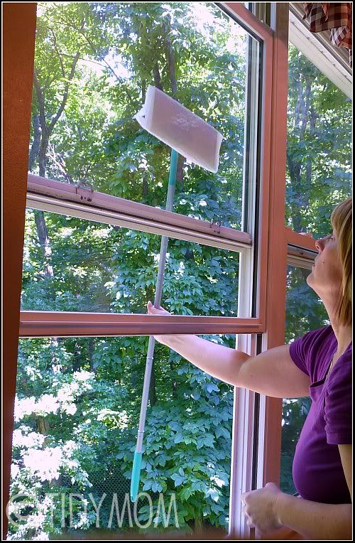 1000+ Ideas About Cleaning Outside Windows On Pinterest | Diy