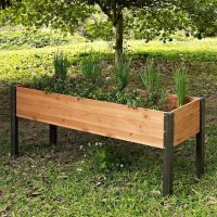 25+ best ideas about Elevated Garden Beds on Pinterest ...