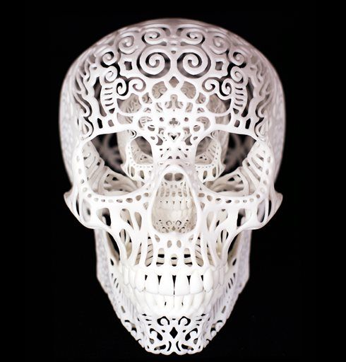 3d Digitally Printed Wallpapers Printer 214 Best Images About 3d Printing Art On Pinterest