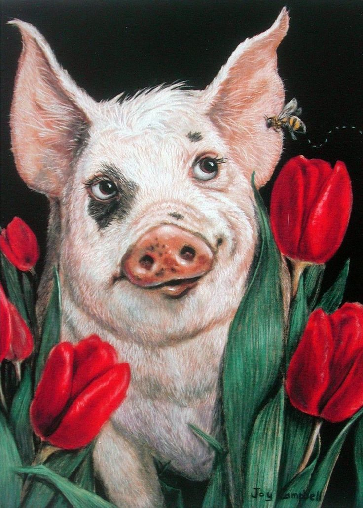 Cute Piglets Wallpaper 25 Best Ideas About Pig Art On Pinterest Farm Art Farm