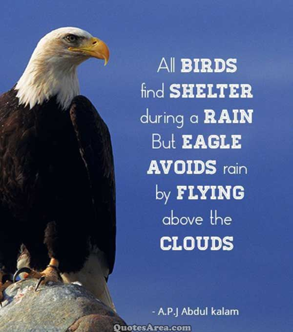 Rain Wallpaper With Quotes In Marathi All Birds Find Shelter During A Rain But Eagle Avoids Rain