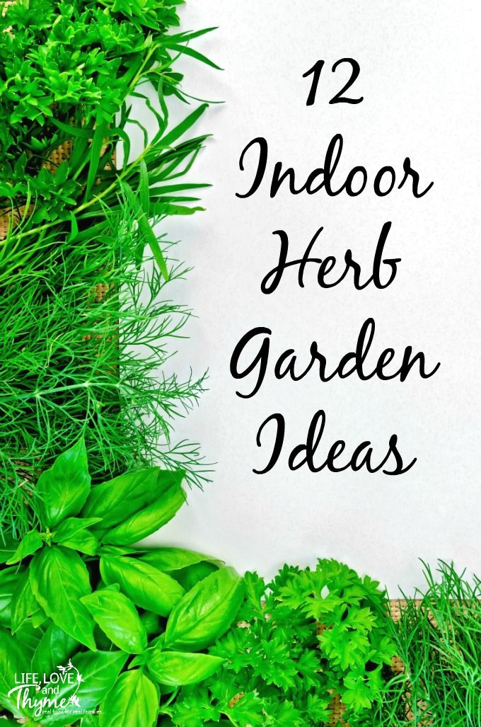 78+ Images About Growing Herbs On Pinterest | Preserve, Pallet