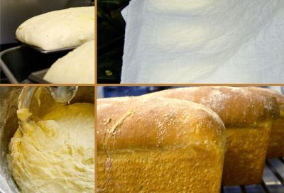 Basic Bread 101 - Paula Deen's Recipes, Home Cooking and Cooking Tips | Bread recipes ...