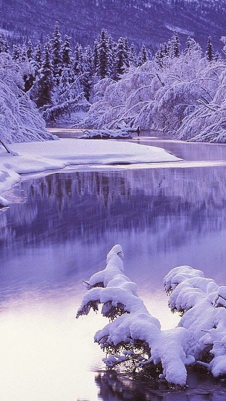 Ski Stuff 17 Best Images About ~ Winter Purple ~ On Pinterest | Snow