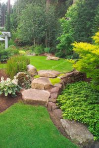 1000+ images about Landscaping a slope on Pinterest ...