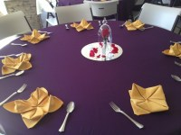Beauty and The Beast themed bridal shower | Wedding ...