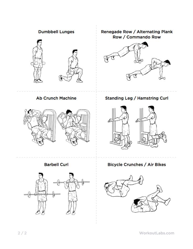 one circuit for a total body workout