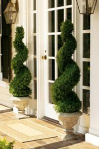 "Swirl topiaries. What a beautiful ""welcome home ..."