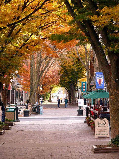 New England Fall Foliage Wallpaper Fall In Old Town Winchester Va Places We Love