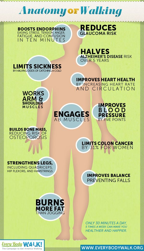 1000 Images About Benefits Of Step Machine Exercise On