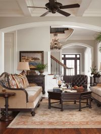 Best 25+ Classic living room ideas on Pinterest