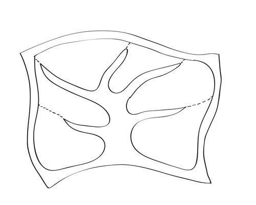 bandsaw boxes diagram