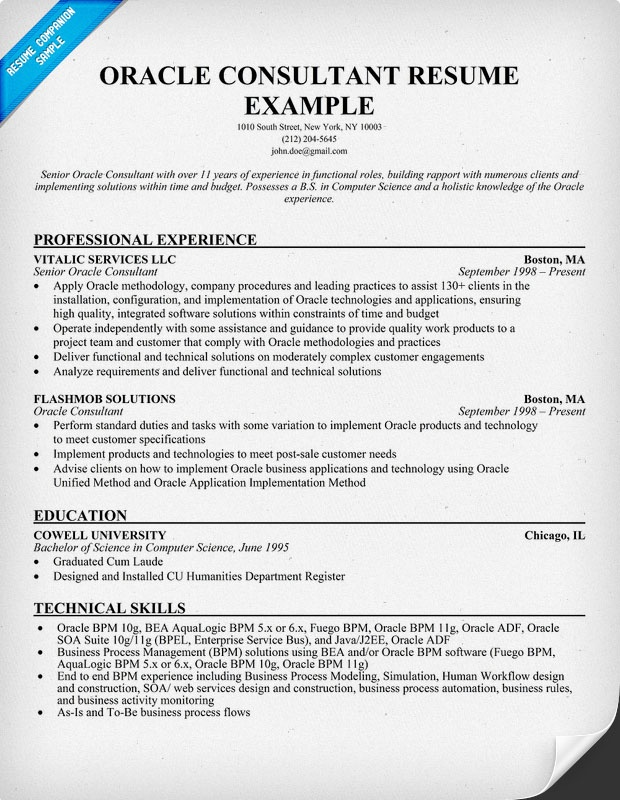 ... Resume Templates Legal Secretary International Business Management   Transportation  Consultant Cover Letter ...