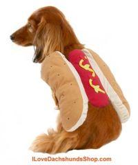 Hot Dog Costume Dachshund | Dolci bassotti | Pinterest ...