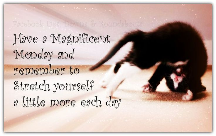 Good Morning Beautiful Wallpapers With Quotes Have A Magnificent Monday And Remember To Stretch Yourself