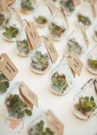 25+ best ideas about Plant wedding favors on Pinterest ...