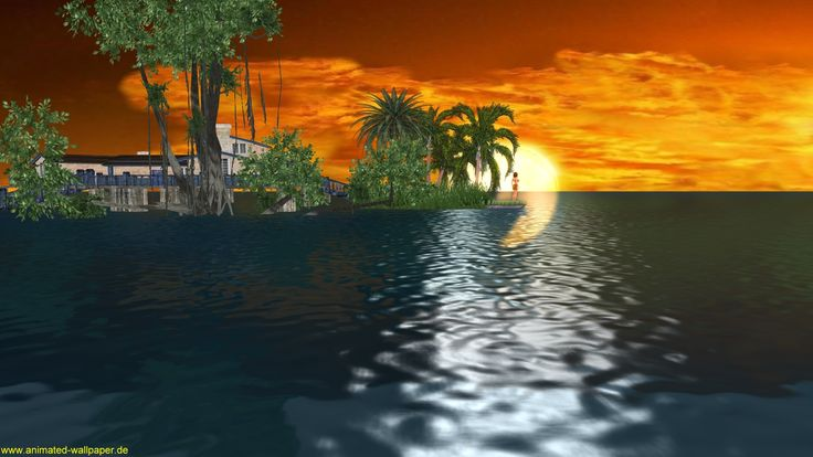 Why Do We Fall Wallpaper Download Free 3d Animated Desktop Wallpaper 3d Animation