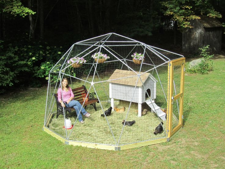 Cage Exterieur Chat 12 Ft Geodesic Dome Outdoor Aviary, Chicken Enclosure