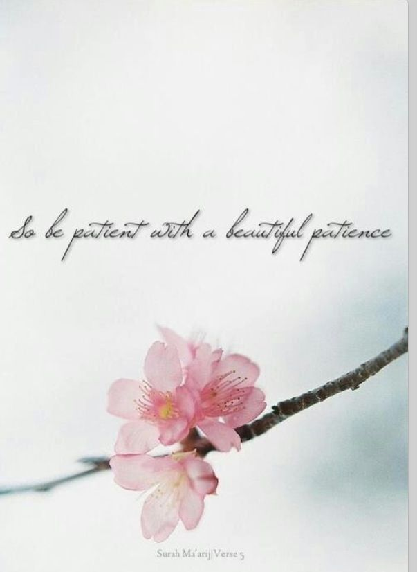 Sabr Quotes Wallpaper 102 Best Muslimah Inspired Images On Pinterest