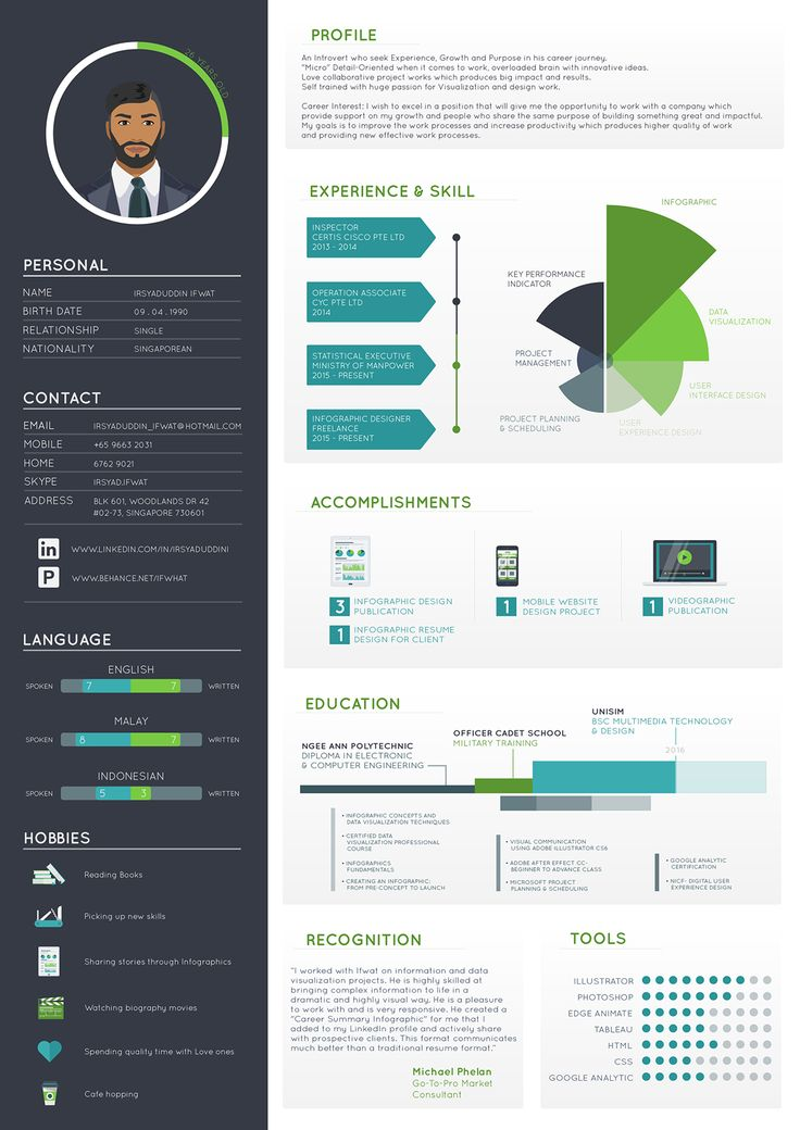 Create Professional Resumes Online For Free Cv Creator 1000 Images About Infographic Visual Resumes On Pinterest