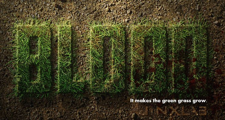 What Makes The Green Grass Grow? | Army Mom Strong | Pinterest