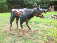 20 best images about Zombie dog on Pinterest