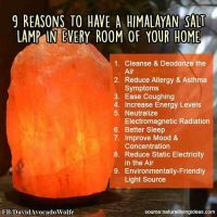 25 best images about Himalayan Salt Lamp on Pinterest ...