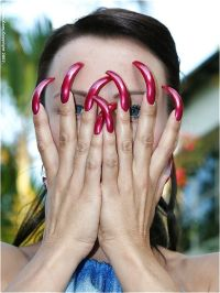 189 best Very Long Curved Nails images on Pinterest