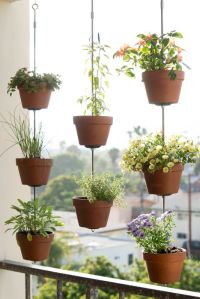 25+ best ideas about Hanging flower pots on Pinterest ...